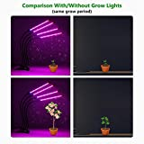 Brizled Plant Grow Lights, 72 LED Plant