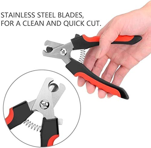 Hunterr Heavy Durability Professional Dog Nail Cutter for Small, Medium and Large Dogs and Cats Claw (Red and Black)