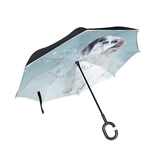 Charles Umbrella - 8