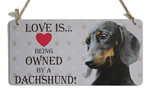 Dog Lover Gifts Love Is Being Owned By A Dachshund Dog Sign With Little Heart Sign (5