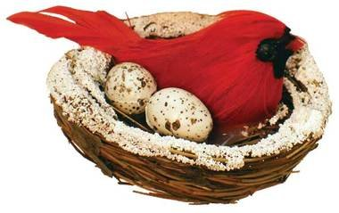 Red Cardinal Bird and Eggs in Snowy Nests Pack of 12