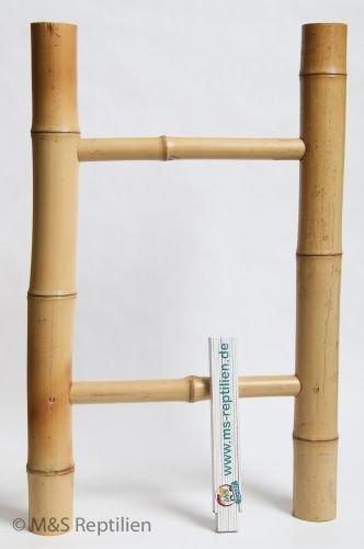 Escabeau en bambou d'escalade pour reptiles M&S Reptilien