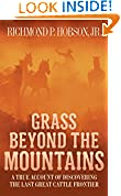 Grass Beyond the Mountains