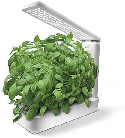 PerfectPrime VB0012WH Smart LED Indoor Garden Hydroponics Growing System Herb Kit 12 Plant Pods