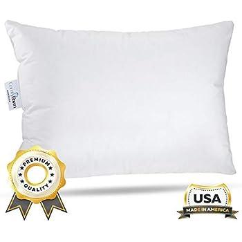 363e466a3cf6 ComfyDown Travel Pillow - 800 Fill Power European Goose Down Pillow for  Plane