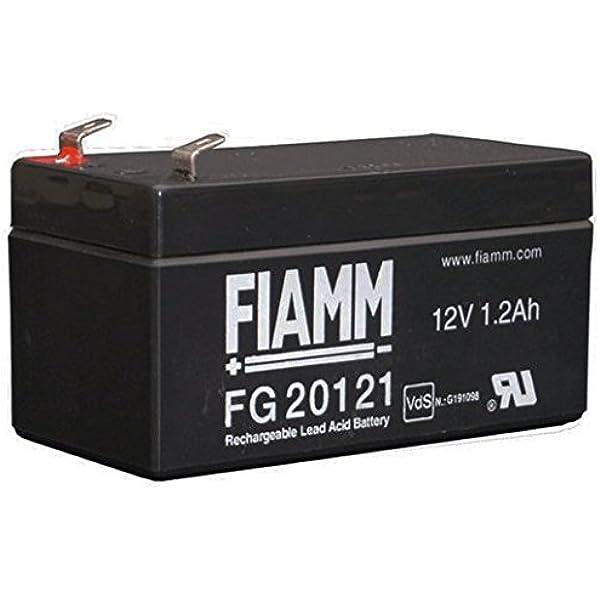 FIAMM FG20121 1.2 Ah 12 V Batería UPS: Amazon.es: Informática