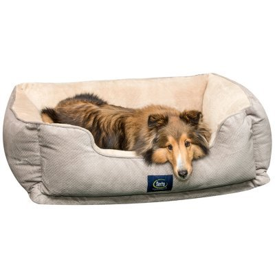 Serta Ortho Cuddler Dog Bed, Large, Grey (Cuddler Bed)