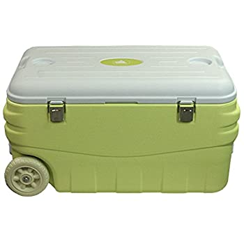 Image of 10T Fridgo Coolers