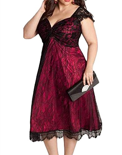 VIGVOG Women's Elegant Plus Size Lace Overlay A-line Dress for Party Evening (2XL, LC61268-3)