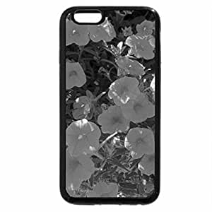 iPhone 6S Plus Case, iPhone 6 Plus Case (Black & White) - A Sunny day with Alberta flowers 12