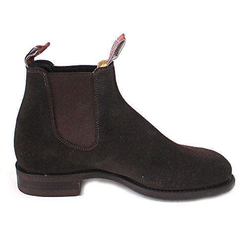 Comfort suede Braun chocolate Chocolate Turnout M R Suede Suede Williams twxqxFS