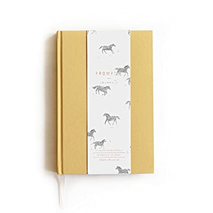 Promptly Journals - Adoption Childhood History Journal (Ochre), Keepsake Baby Book, Records Every Stage of Child's Life, Adoption Process Thru Age 18 Years, Elegant Unisex Design for Boy or Girl Records Every Stage of Child' s Life