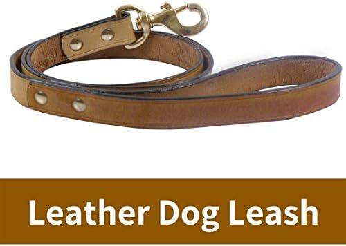 PetSutra Training Genuine Leather Multicolor product image
