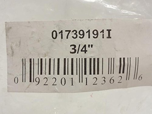 Smith-Cooper 173-9191I Brass Swing Check Valve 3/4 NPT, 200WOG by Smith-Cooper (Image #2)
