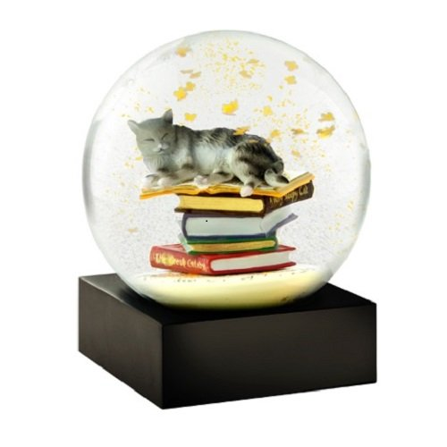 (Cat on Books Snow Globes by CoolSnowGlobes®)