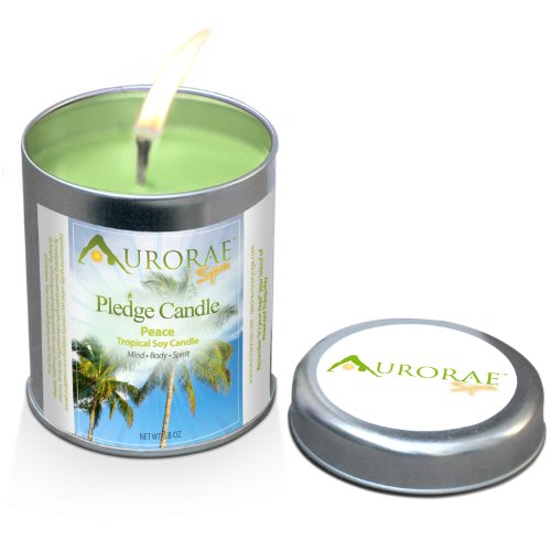 Aurorae 6.8 oz Tropical (Coconut & Banana) Scented Soy Aromatherapy Candle