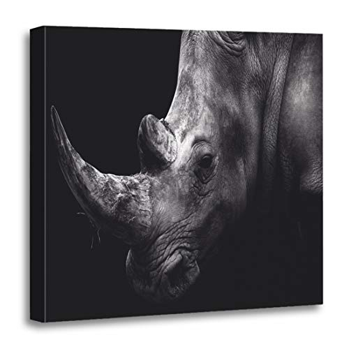 Semtomn Canvas Wall Art Print Horn Rhino Rhinoceros Face Africa Black Conservation Lion South Artwork for Home Decor 12 x 12 Inches