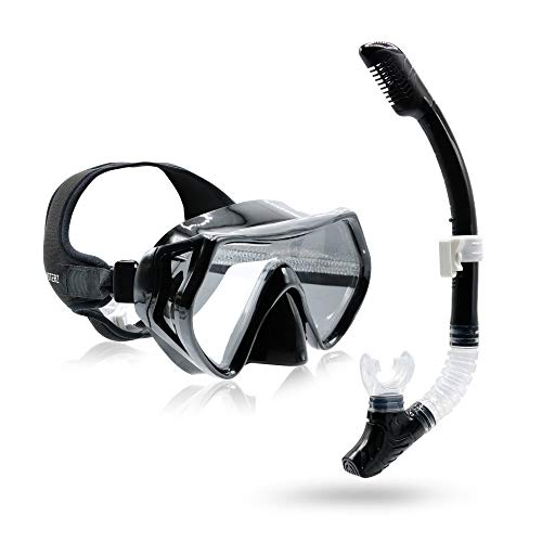 Frogglez Dive Snorkeling/Diving Set - Safer Than Full FACE MASK - Anti Leak, Anti Fog, Dry TOP Snorkel, Distortion Free View, Patented Easy to use Painless Strap, Large