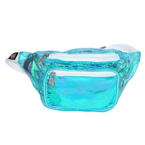 (Dickies Hip Sack Hiking Waist Pack, Clear Iridescent, One Size)