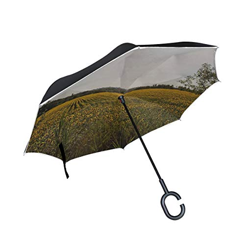 (Rh Studio Inverted Umbrella Rain Sun Car Reversible Umbrella Provence Light Flower Sunflowers Large Double Layer Outdoor Upside Down Umbrella with Women with Uv Protection C-Shaped Handle)