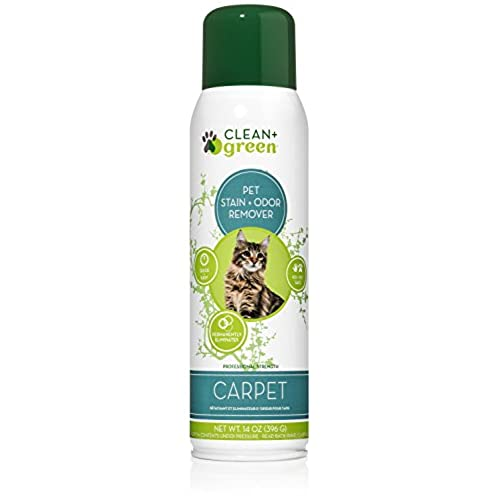 strength carpet and upholstery pet odor eliminator deodorizer and stain remover for cats 14 ounce