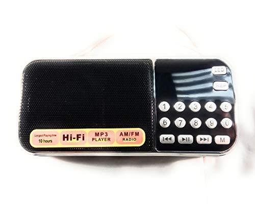 Iphoenix Portable Mini Bluetooth USB FM Radio Speaker Music Player Micro SD/TF Card PC iPod Phone SH102AMBT Black (Frequency Radio Wireless Usb Pc)
