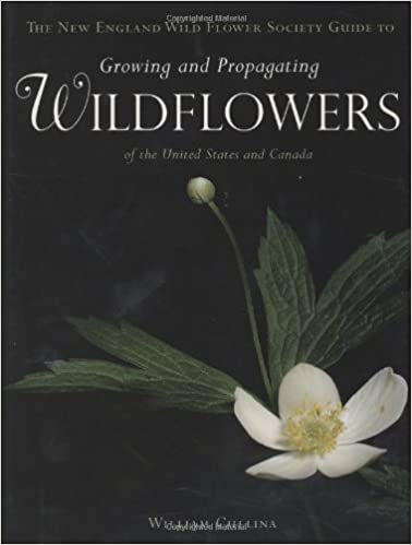 Wildflowers A Guide To Growing And Propagating Native Flowers Of