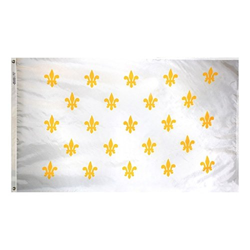 (3X5 White New Orleans French 23 Fleur De Lis Flag 3'X5' House Banner )