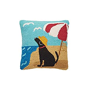 41eQyuoNVLL._SS300_ 100+ Coastal Throw Pillows & Beach Throw Pillows