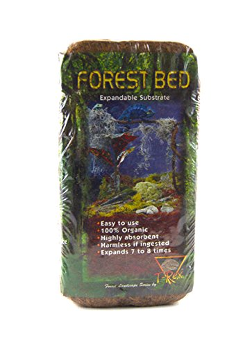 Eco Earth for Small Animal and Insects Size: Single Brick