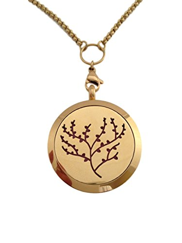 Essential Diffuser Aromatherapy Necklace Stainless product image