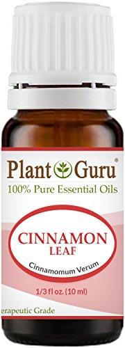 Cinnamon Leaf Essential Oil 10 ml 100% Pure Undiluted Therap