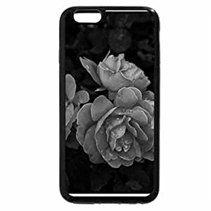 iPhone 6S Case, iPhone 6 Case (Black & White) - A beautiful Cheyenne Roses