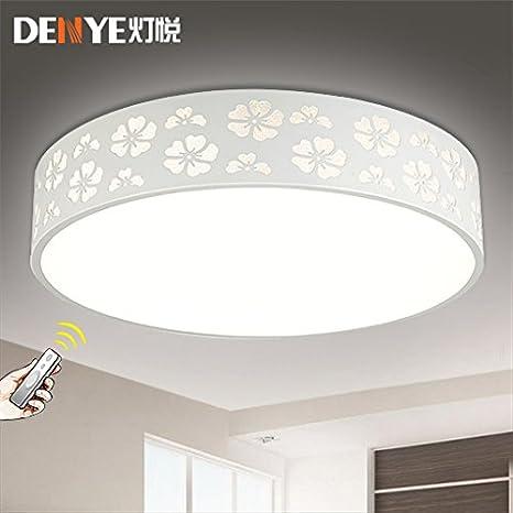 Las luces de techo colgante/LUCES/lámpara de techo/ Montaje ...