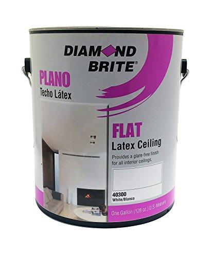 Ceiling Spray (Diamond Brite Paint 40300 1-Gallon Interior Latex Flat Acrylic Vinyl Ceiling White Paint)