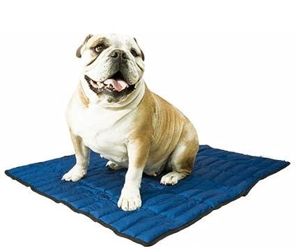 Aqua Coolkeeper Pacific Cooling Mat Cama Refrescante, L, Azul: Amazon.es: Productos para mascotas