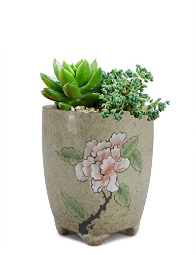 Dahlia Hand Painted Flower Ceramic Succulent Planter/Plant Pot/Flower Pot/Bonsai Pot, 3A
