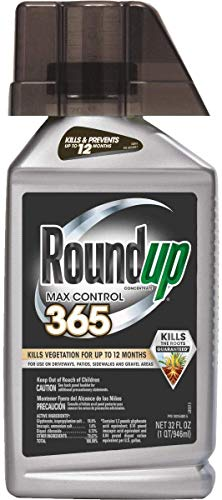 Roundup Concentrate Max Control