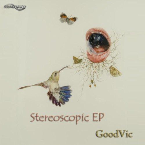 amazoncom stereoscopic goodvic mp3 downloads