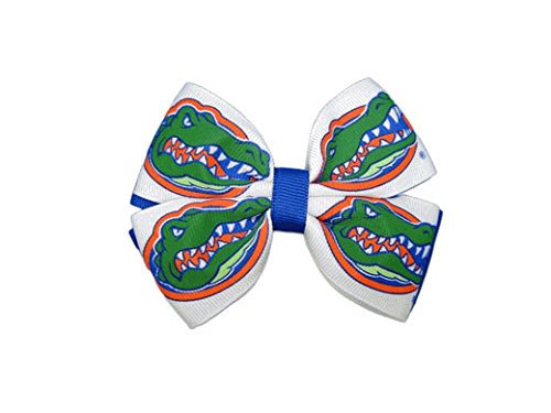Florida Pinwheel (University Of Florida Pinwheel Hair Bow)