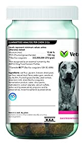 VetriScience Laboratories-Probiotic Everyday Dogs, Digestive Health Supplement-60 Bite Sized Soft Chews