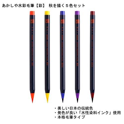 NEW Akashiya CA200//20V SAI set of 20 assorted colors From Japan