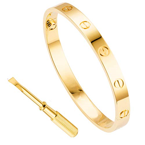 Haoze Love Bangle Screw Bracelet with Screwdriver Stainless Steel for Valentines Wedding (Gold, 7.5)