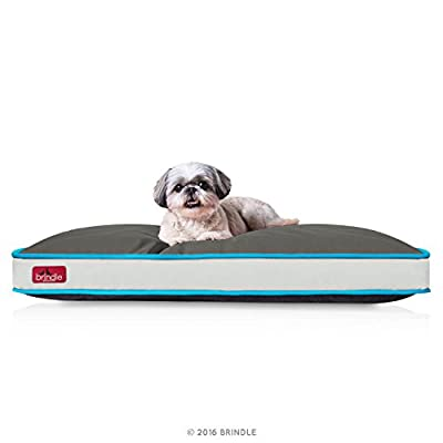 BRINDLE Waterproof Pet Bed - Machine Washable Padded Bed for Dogs and Cats - 34 x 22 inches
