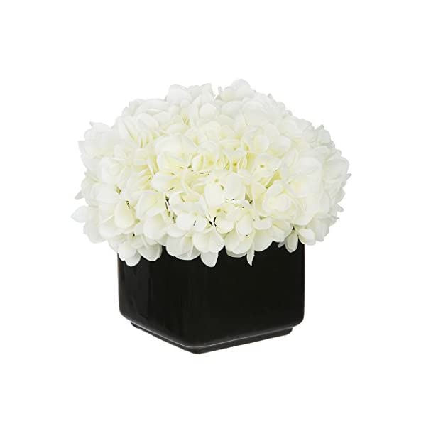 House of Silk Flowers Artificial Hydrangea in Small Black Cube Ceramic Color: White
