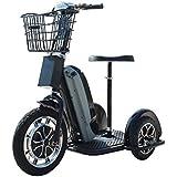 MotoTec Electric Trike 48v 800w Sit/Stand Maximum Weight 240 lbs 25 MPH