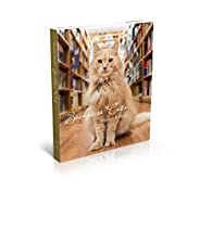Bookstore Cats