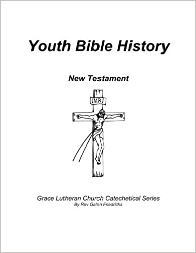 Youth Bible History New Testament For Use With 100 Bible Stories