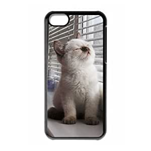 MMZ DIY PHONE CASEUnique DIY Design Cover Case with Hard Shell Protection for iphone 6 plus 5.5 inch case with Cute Kitten Cat lxa#439913