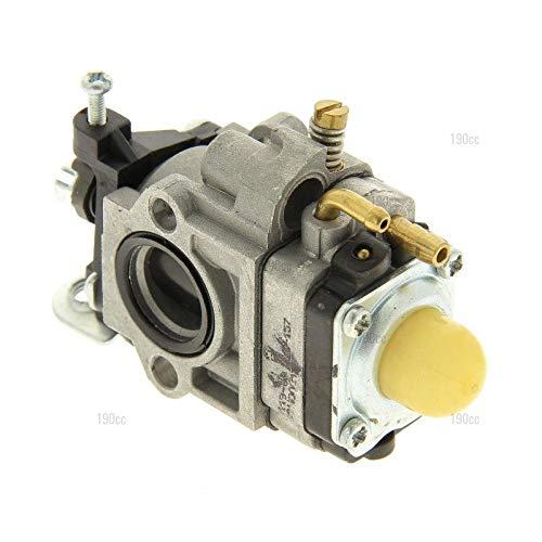 Trimma CLVDB0558 - Carburador desbrozadora: Amazon.es: Jardín